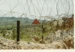 Hill 65 - Mine Field.jpg